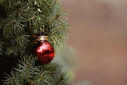 Lever oude kerstboom in en ontvang geld