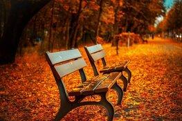 Zachte herfstweek voor de boeg, geleidelijk iets meer buien